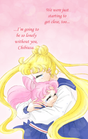 Goodbye, Chibiusa by LovelessAndWaiting