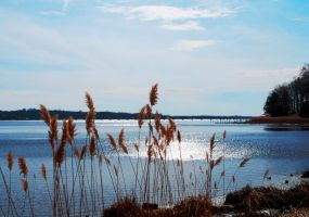 The Navesink River, II by SoCallMeNothing