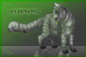 Echosong of SkyClan by xxMoonwish