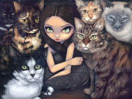 It's All About the Cats by jasminetoad