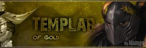 Templar Of Gold by Mamgui