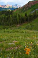 Black Bear Pass by Justmary15