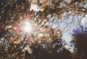 Lens Flare by almostkilledme
