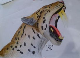 Similadon (Sabre Tooth Cat) by PunkAsFcuk82