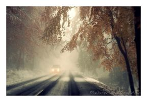 winter in autumn by landscapesaxony