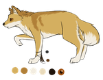 Dingo Design Contest by Painted-Shadow