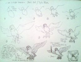 Line draw barn owl in flight tutorial by IggySeymour