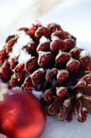 Christmas Pinecone by flowersteph
