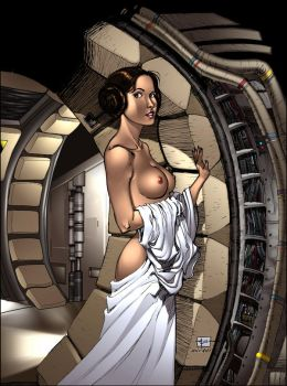 Princess Leia on the Falcon by TCatt