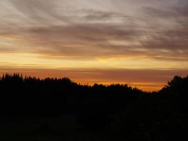 Sunset over the forest 35 by Spike654