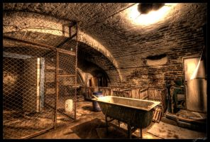 Cold Cellar by Jurnov