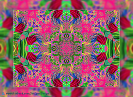 Kaleidoscope by Joe-Lynn-Design