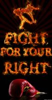 Fight for your right by SAMUXX