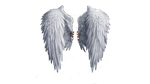 Angel Wings PNG by BlazMuffin
