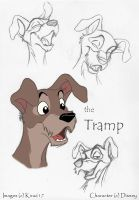 Tramp ModelSheet by kira617