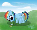 Filly Dash by RB-D