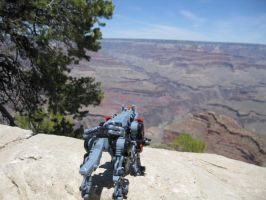 Red's Grand Canyon Adventure 3 by Liger-Zero-Schneider