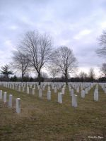 Long Island National Cemetery1 by MidniteGloria