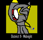 PKMN HG: Midnight Icon by FearlessMist