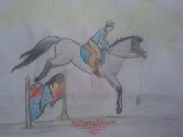 Contest entry for EBS Australiana show by Flyingfetlocks