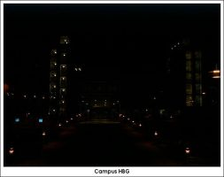 Campus HBG Darkside by firelight