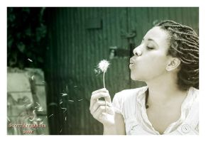 Make a wish.. by straightfromcamera