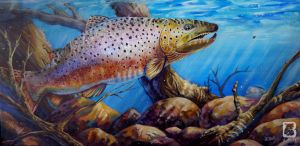 Brown Trout by LindseyBell