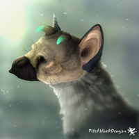 Trico by PitchblackDragon
