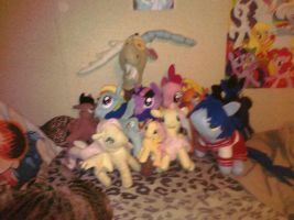 Pony plushies I made and bought by AshleyFluttershy