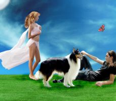 Perfect Family by Colliemom