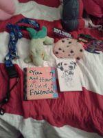 Awesome Gifts That I Gotten From My Best Friend C: by Celeste-the-Cat