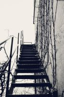 Stairs by Morrighan178