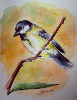 Bird titmouse by Kantaka1