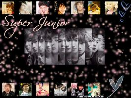 Super Junior by minkyungx3
