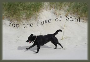 For the Love of Sand by silvercypress