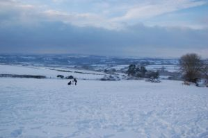 Creating In The Snow by rayrussell2000uk