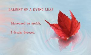Lament of a dying leaf by DemonicTemptress