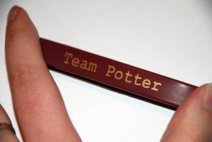 Team Potter by kittykat01
