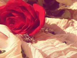 This One Rose by Irinna7