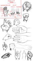 Hands - Dump by synyster-gates-A7X