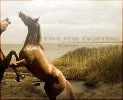 Five for Fighting Landscape by SineSpes