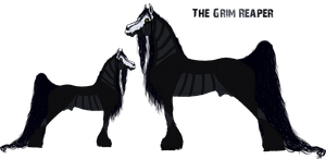 The Grim Reaper Ref. by Cerulean-Sky-Stables