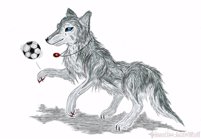 AT: Soccer Pratice by Sunrise-LoneWolf
