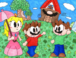 Animal Crossing Mario's World by Mustache-Broz1
