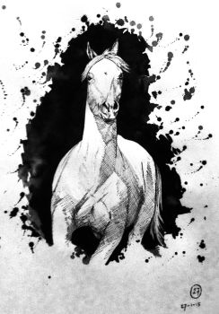 #27 Drawing a horse a day 2015 by Nienke15