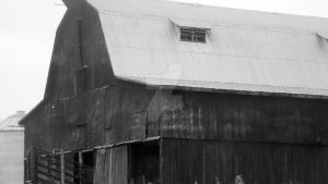 Old black and white barn by Catsie95