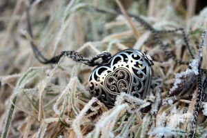 Frost Heart by PhotoCanon