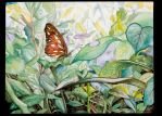 Monarch by chastened