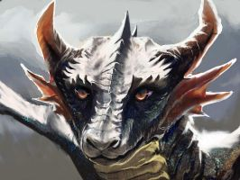 Young Dragon by Decadia