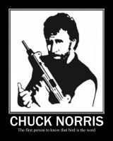 Chuck Norris by Omnitrixter16